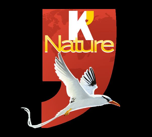K' Nature